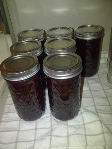 black berry jelly